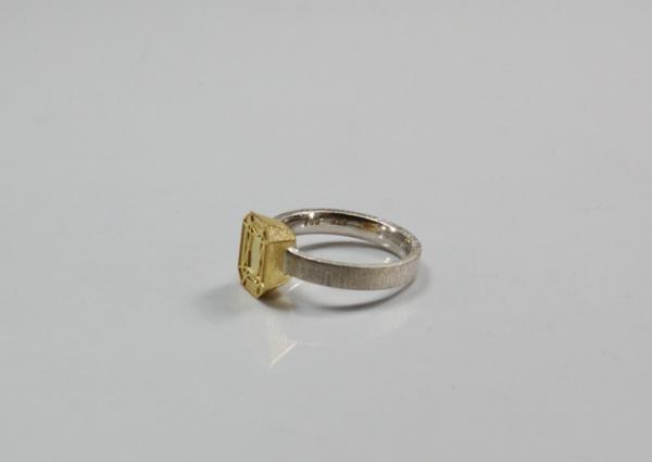 poliertes Relief auf goldenem Aufsatz des silbernen Rings