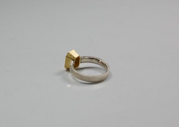 Blick vom hinten auf den Ring, zeigt die Öffnung der goldenen Fassung
